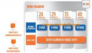 Wind Magnum