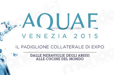 Aquae Venezia 2015 - Expo Acqua